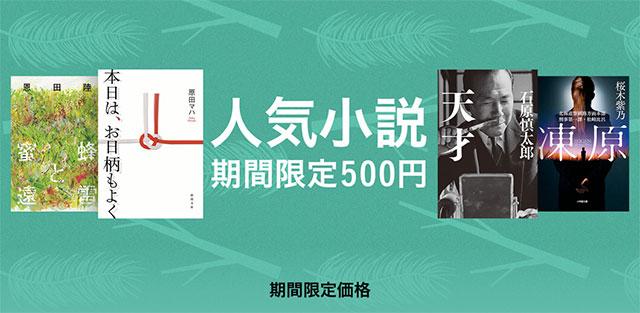人気小説 期間限定500円