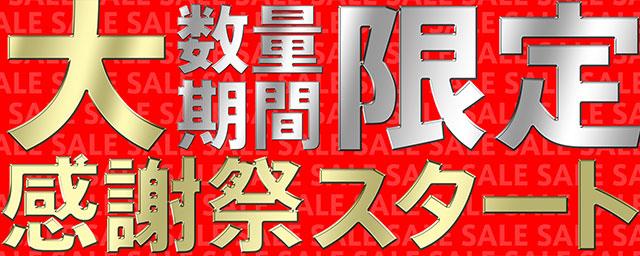 決算大感謝セール 2017 :フォーカルポイント株式会社