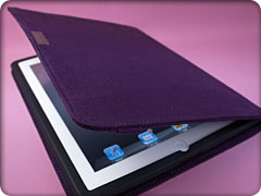 moshi concerti for iPad 2