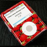 voxstore iPod nanoデザインケース