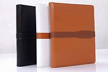iFeather GINO Leather Case