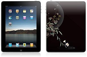 iDentity iPad用背面スキンカバー