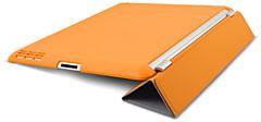 iFrogz iPad 2 BackBone
