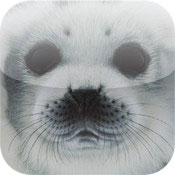 IWAGO'S Mitsuaki Iwago - World of Animals Vol.1
