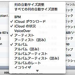 iTunes 11の表示オプション