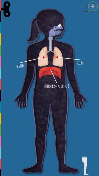 The Human Body ~ あそんでまなぼう