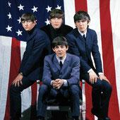 ザ・ビートルズ The U.S. Albums