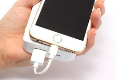 LEPLUS Compact USB Lightning Cable