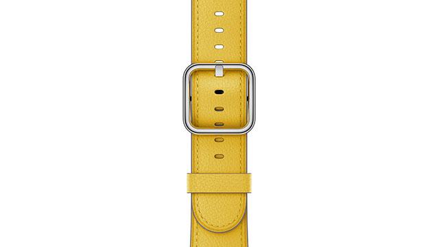 Apple Watch サンフラワークラシックバックル