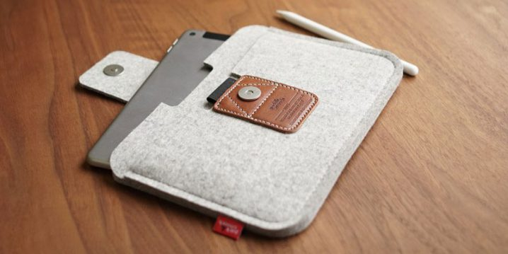 Pack&Smooch LLEYN for iPad mini 5