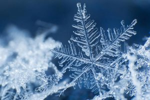 デザインラボ - 子ども向け:永井拓三に学ぶ雪の科学と神秘