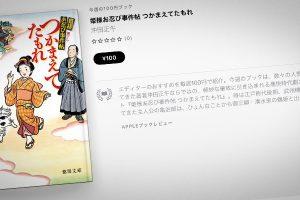 沖田正午「姫様お忍び事件帖 つかまえてたもれ」