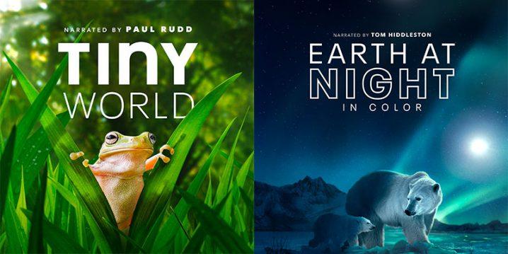 「小さな世界」と「カラーで見る夜の世界」